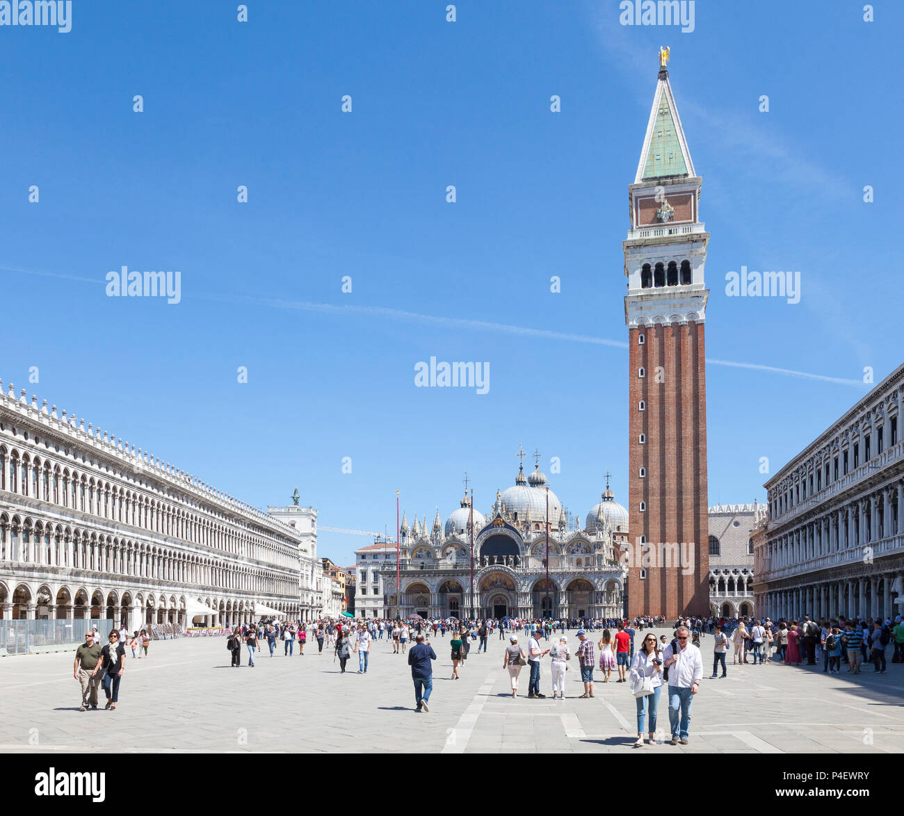 Piazza San Marco, Basilica San Marco and Campanile, Venice,  Veneto, Italy, St Marks Square, St Marks Basilica, bell tower, belltower, cathedral Stock Photo