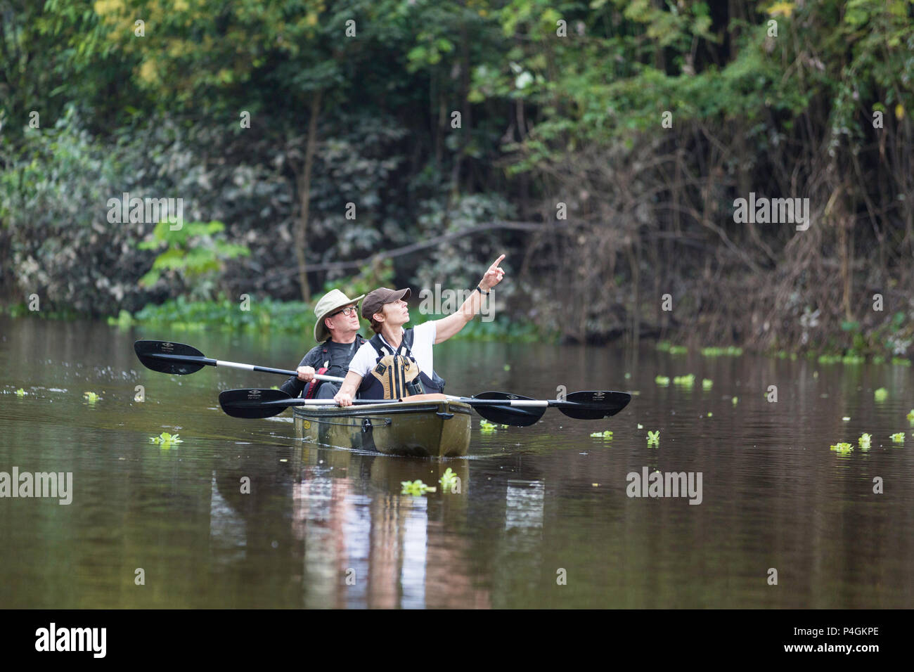 Lindblad Expeditions guests kayaking in Amazon National Park, Loreto, Peru - Stock Image