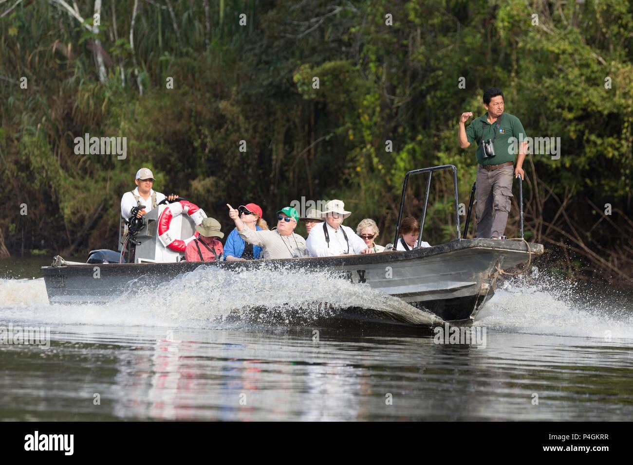 Lindblad Expeditions guests exploring the El Dorado Caño, Ucayali River, Loreto, Peru - Stock Image