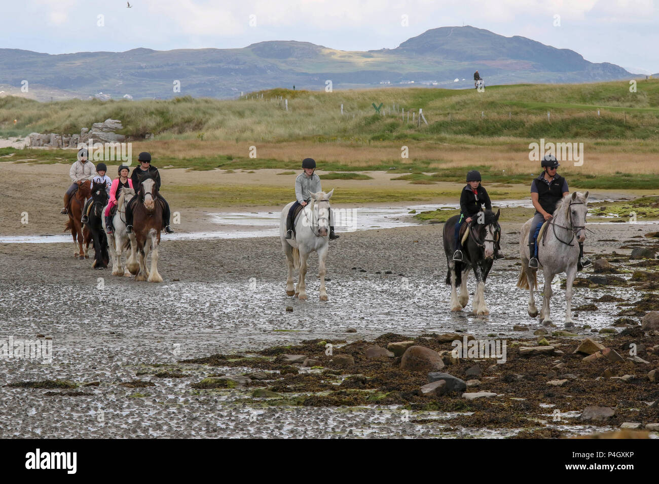 Horse riding and golf at Dunfanaghy County Donegal Ireland - Stock Image