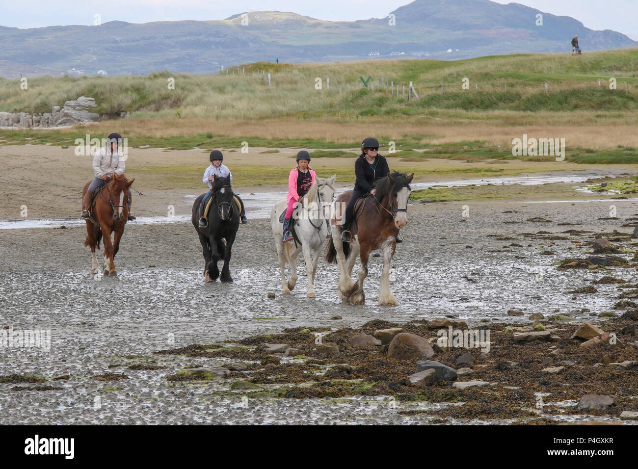 Horse riders coming off the beach at Dunfanaghy County Donegal Ireland - Stock Image