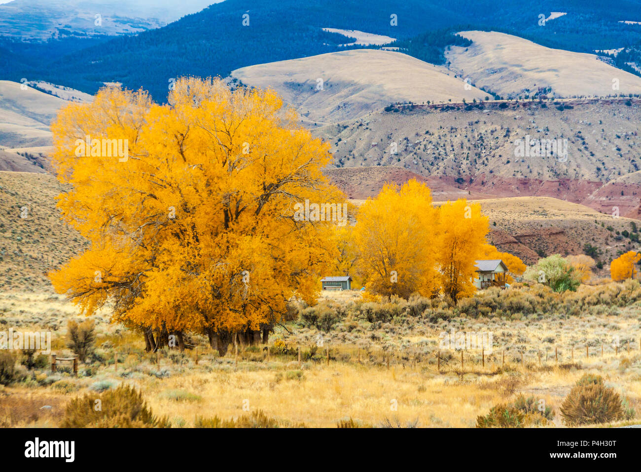 Autumn color along scenic highway US 287 through rural ranching country in the hills and mountains of central Wyoming. Stock Photo