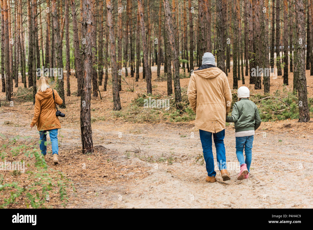 back view of family walking by pine forest together - Stock Image