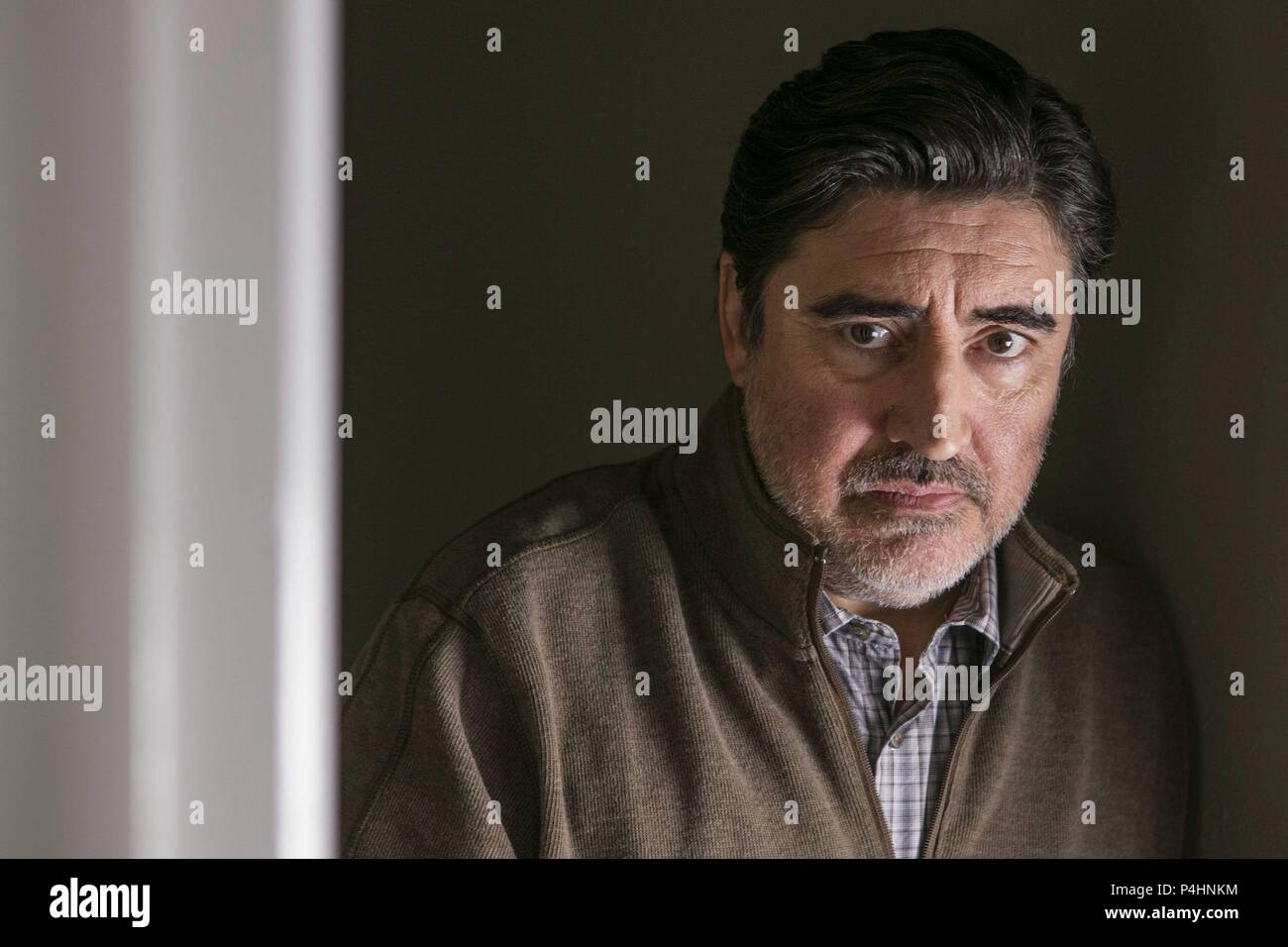 Картинки по Еапросу A Family Man Alfred Molina