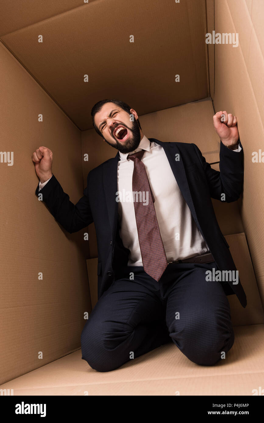 businessman with claustrophobia screaming in cardboard box - Stock Image