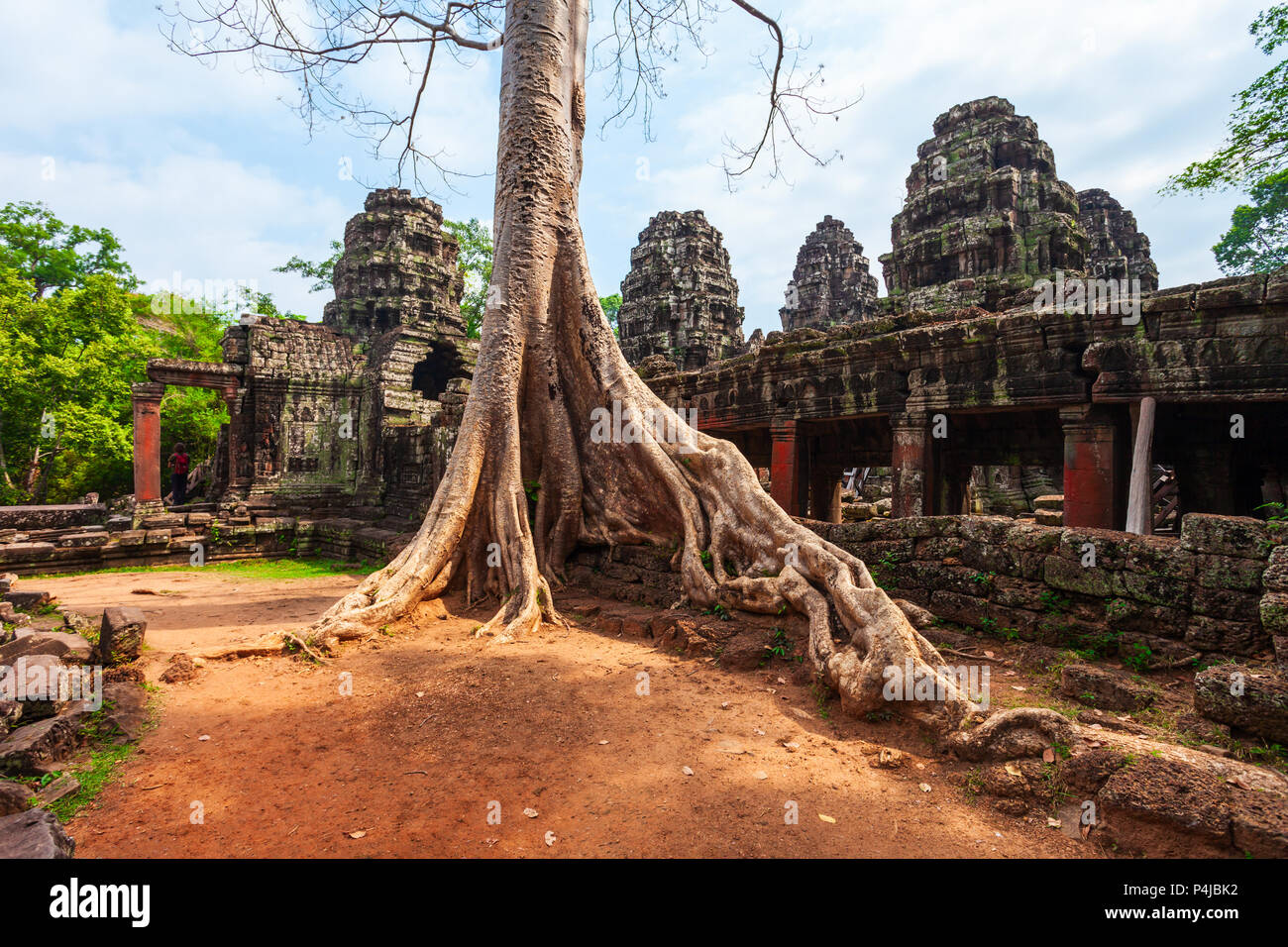 Ta Prohm or Prasat Taprohm is the temple at Angkor in Siem Reap in Cambodia - Stock Image