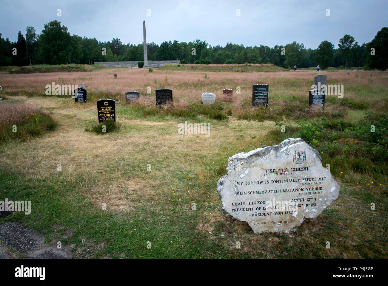 Graves in the memorial grounds of Bergen-Belsen concentration camp.. Stock Photo