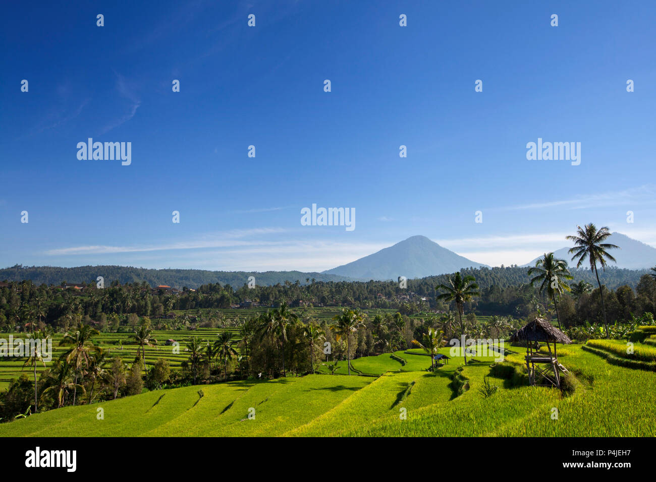 Agung volcano on the sunrise, Bali island in Indonesia - Stock Image