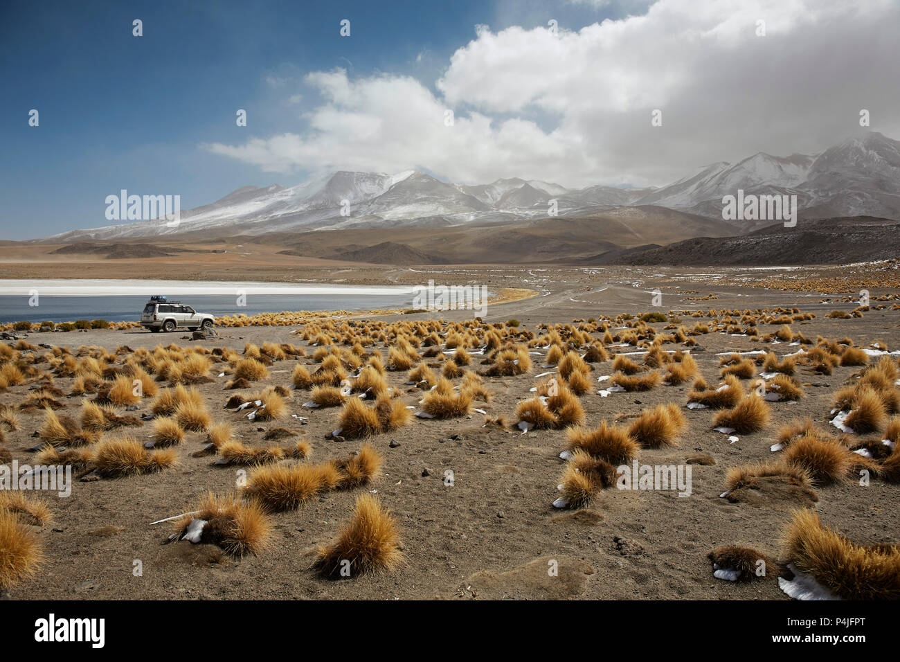 Lake Canapa, Atacama Desert, Bolivia - Stock Image