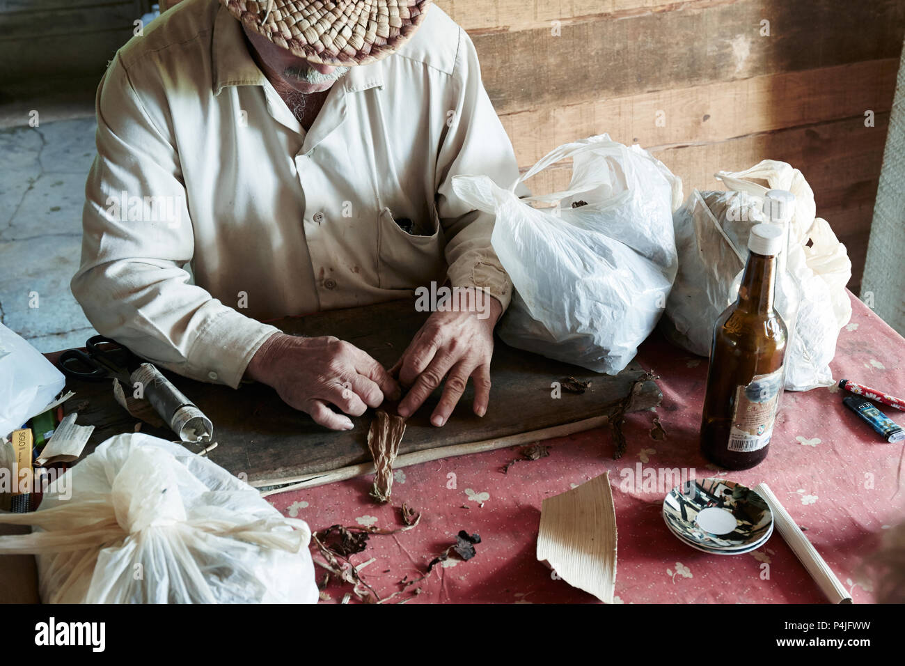 Man processing the tobacco leaves and making cigars - Stock Image