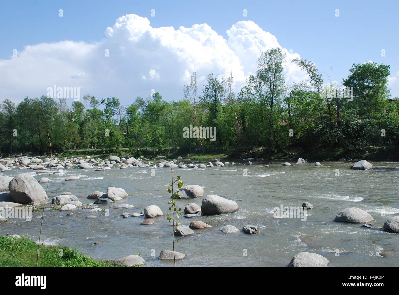 Majestic View from the river bank - Stock Image