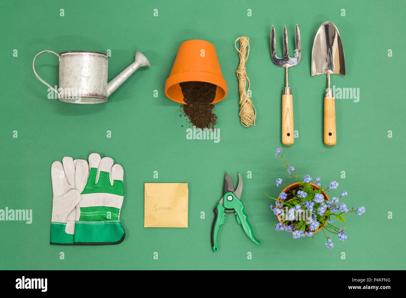 A flat lay arrangement of Gardening equipment on a green background - Stock Image