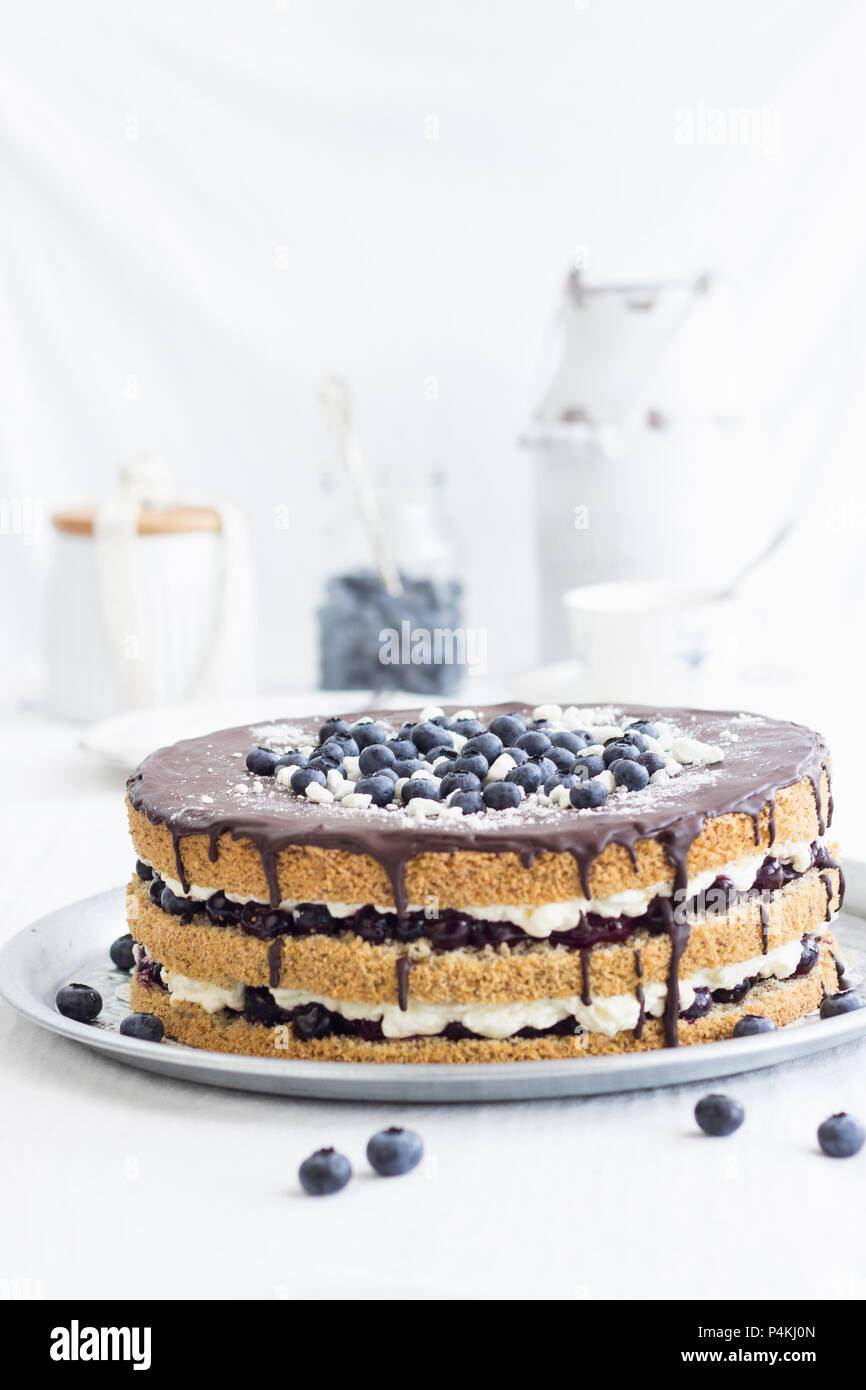 Summer cake with a nut sponge base and a blueberry cream filling - Stock Image