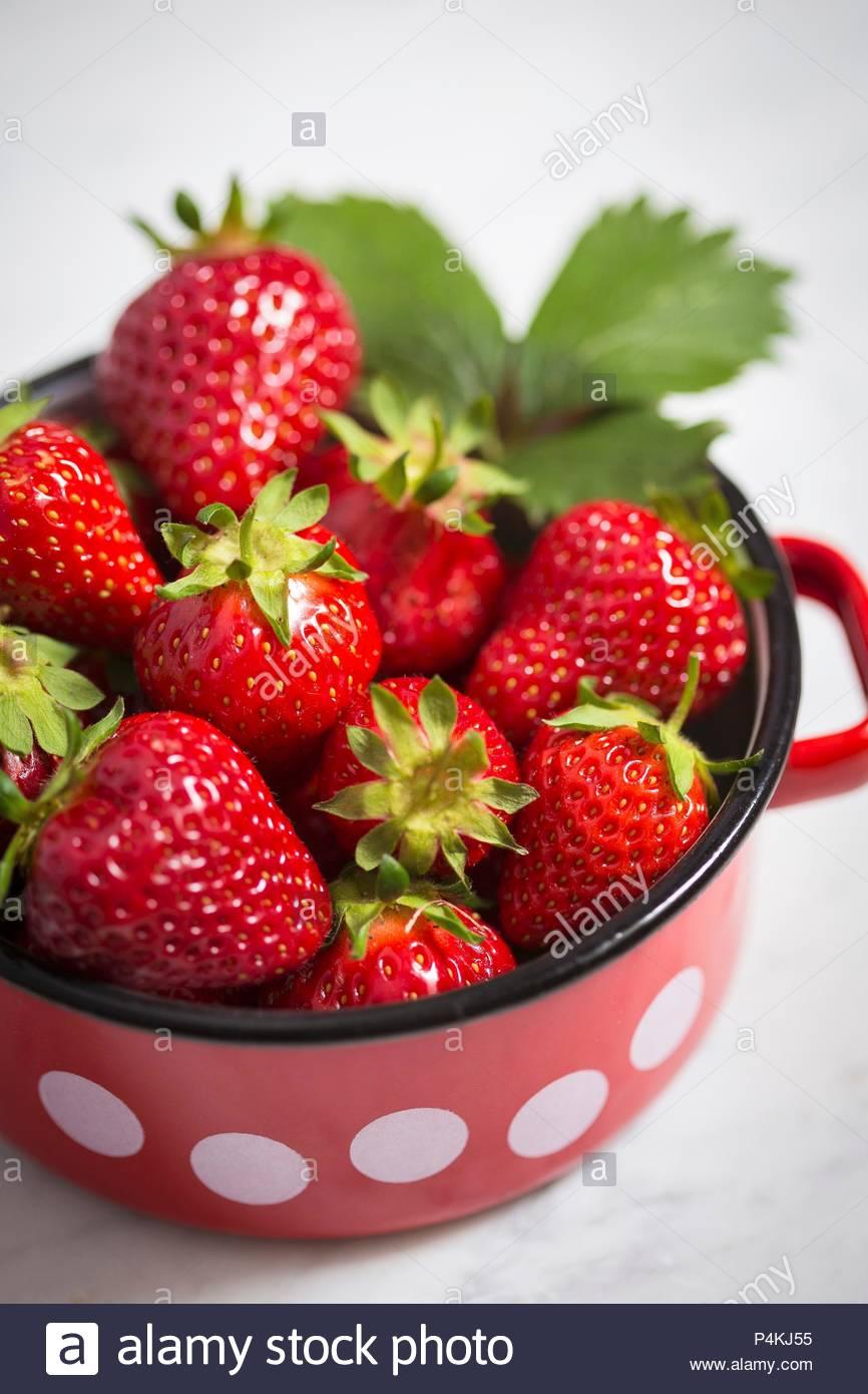 Strawberries in an enamel pot - Stock Image