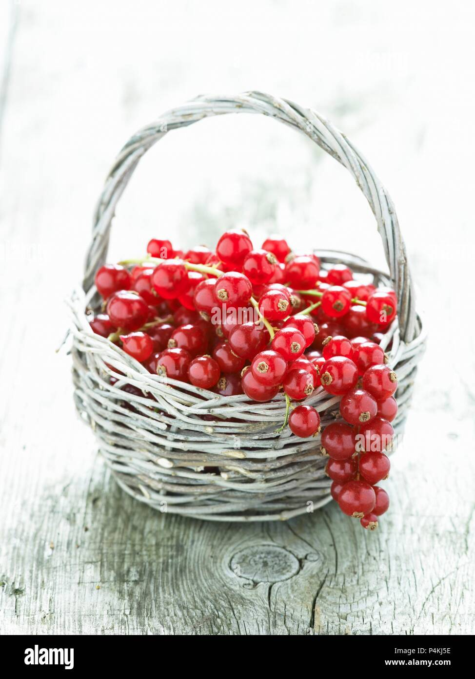 Redcurrants in a basket - Stock Image