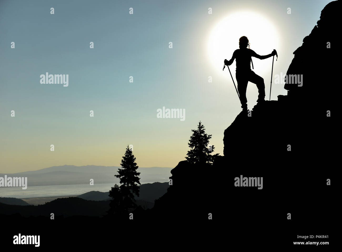 inspired by nature & target success - Stock Image