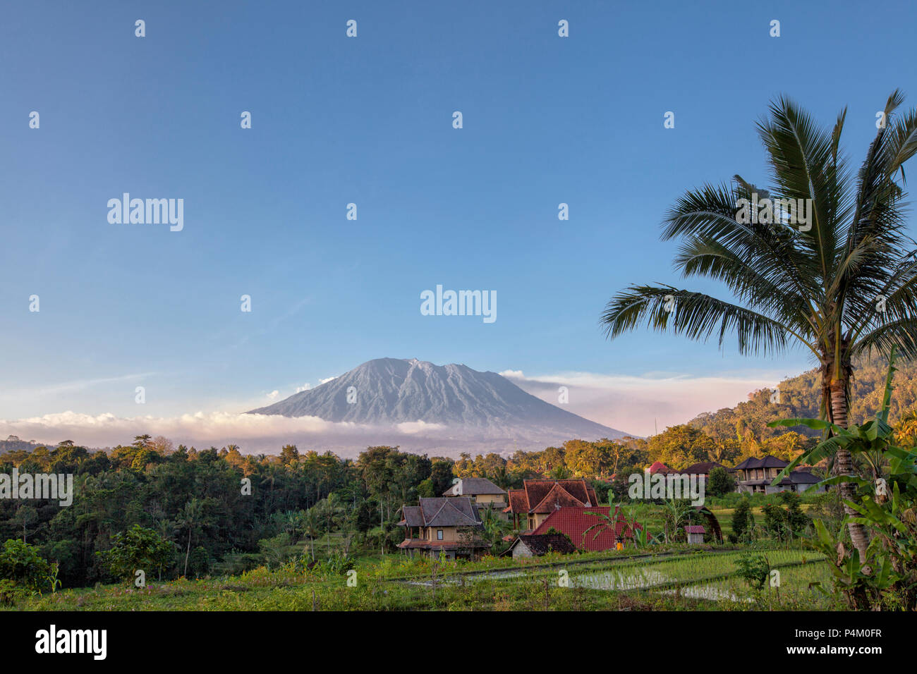Rice terraces with Mount Agung in background, Bali, Indonesia - Stock Image