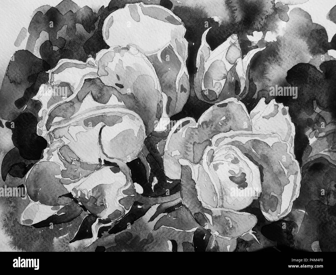 Watercolor Flower Painting Black And White Stock Photos Images Alamy