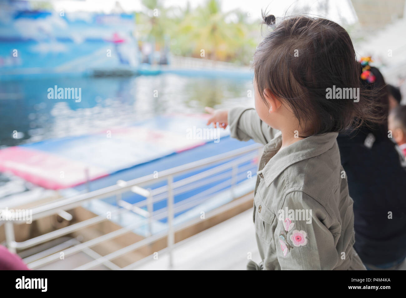 Asian baby girl enjoying to see dolphin show, family lifestyle concept. - Stock Image