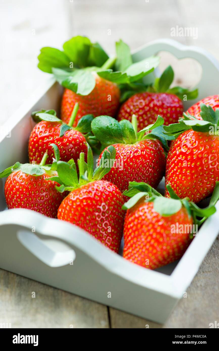 Strawberries in a white wooden tray - Stock Image