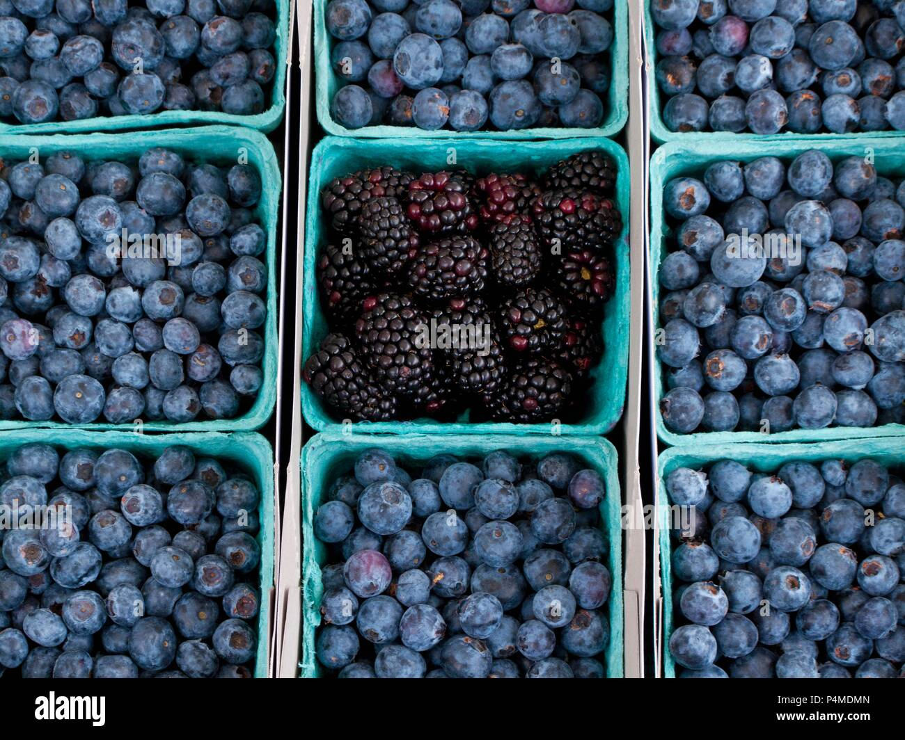 Blueberries and blackberries at a farmers market - Stock Image