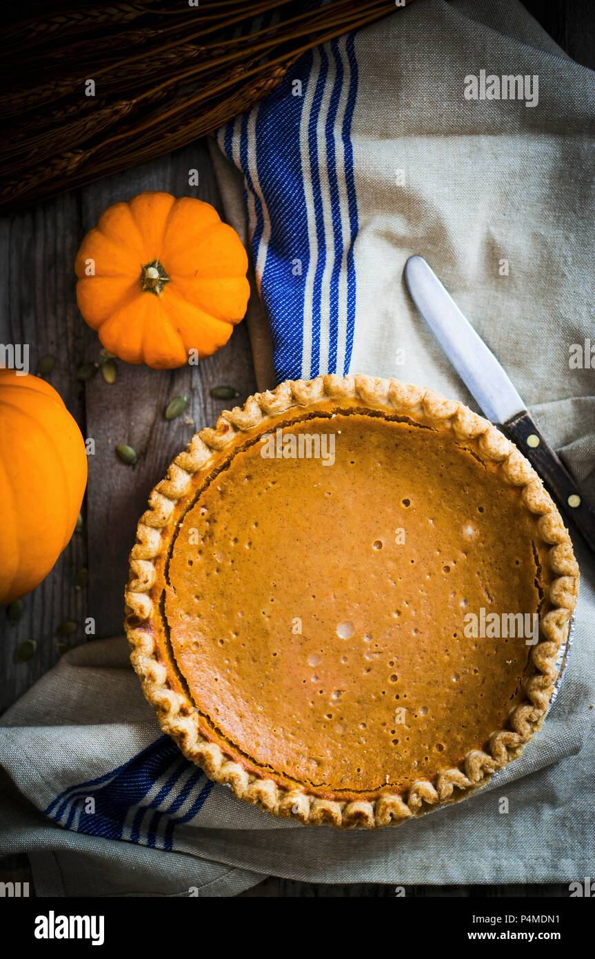 A whole pumpkin pie (seen from above) - Stock Image