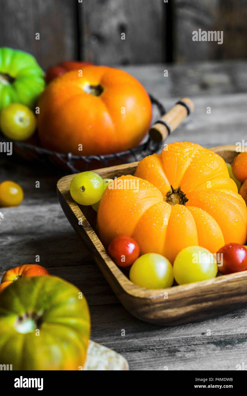 Colourful heirloom tomatoes on rustic wooden surface - Stock Image