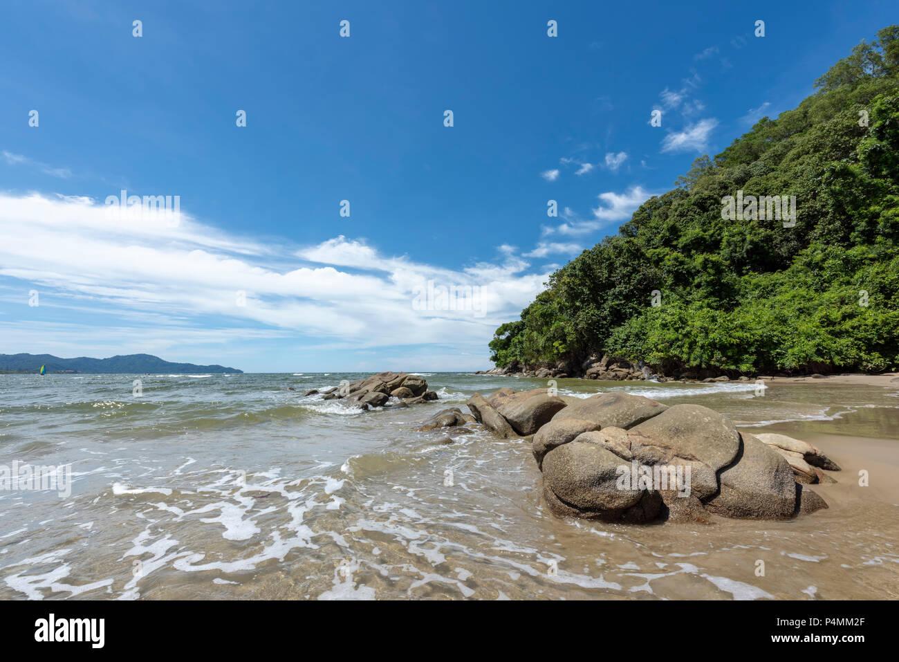 The Borneo rainforest reaches down to the South China Sea at Kota Kinabalu, Borneo, Malaysia - Stock Image