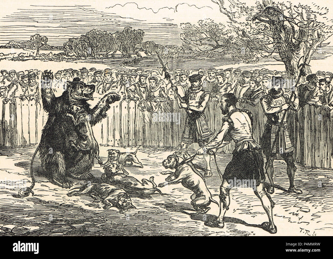 Bear baiting in the Elizabethan era - Stock Image