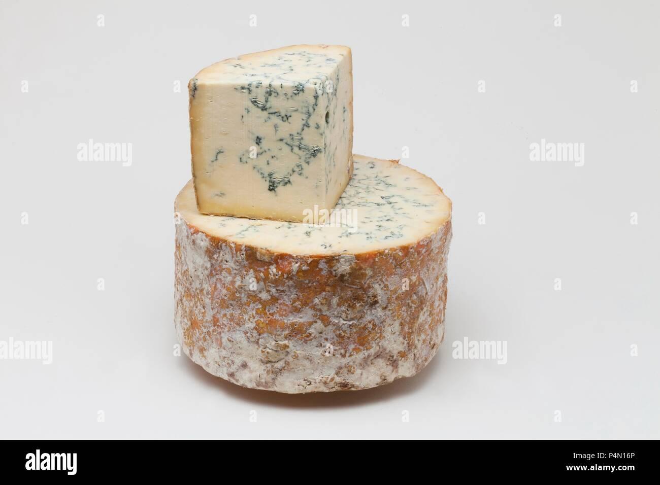 Stilton (blue cheese, Great Britain) - Stock Image