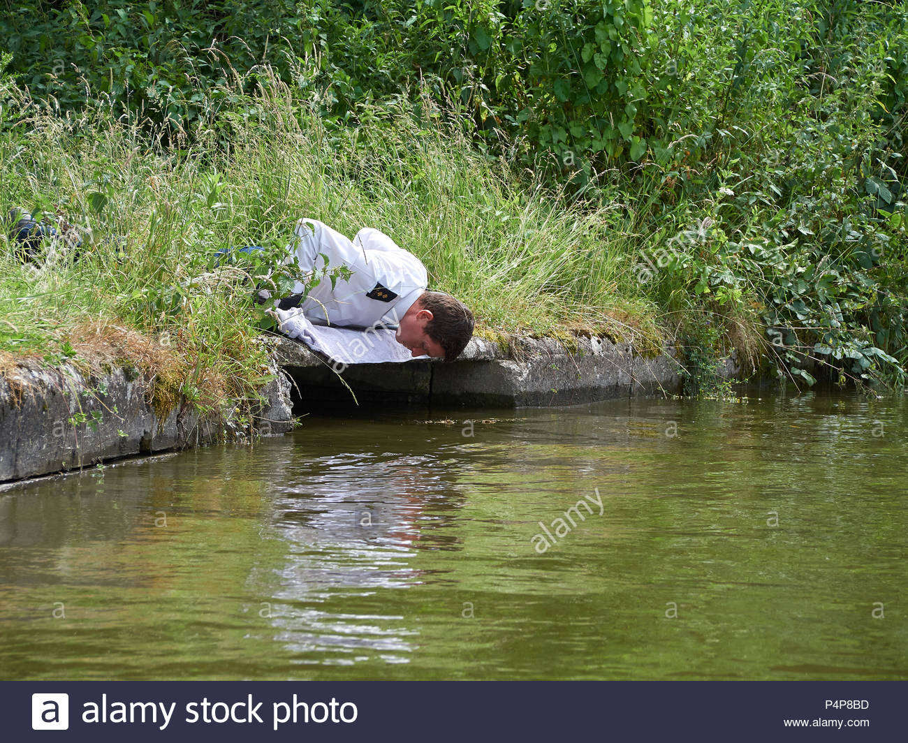 Officer Jamie checkign on the animal before attempting the rescue - Stock Image