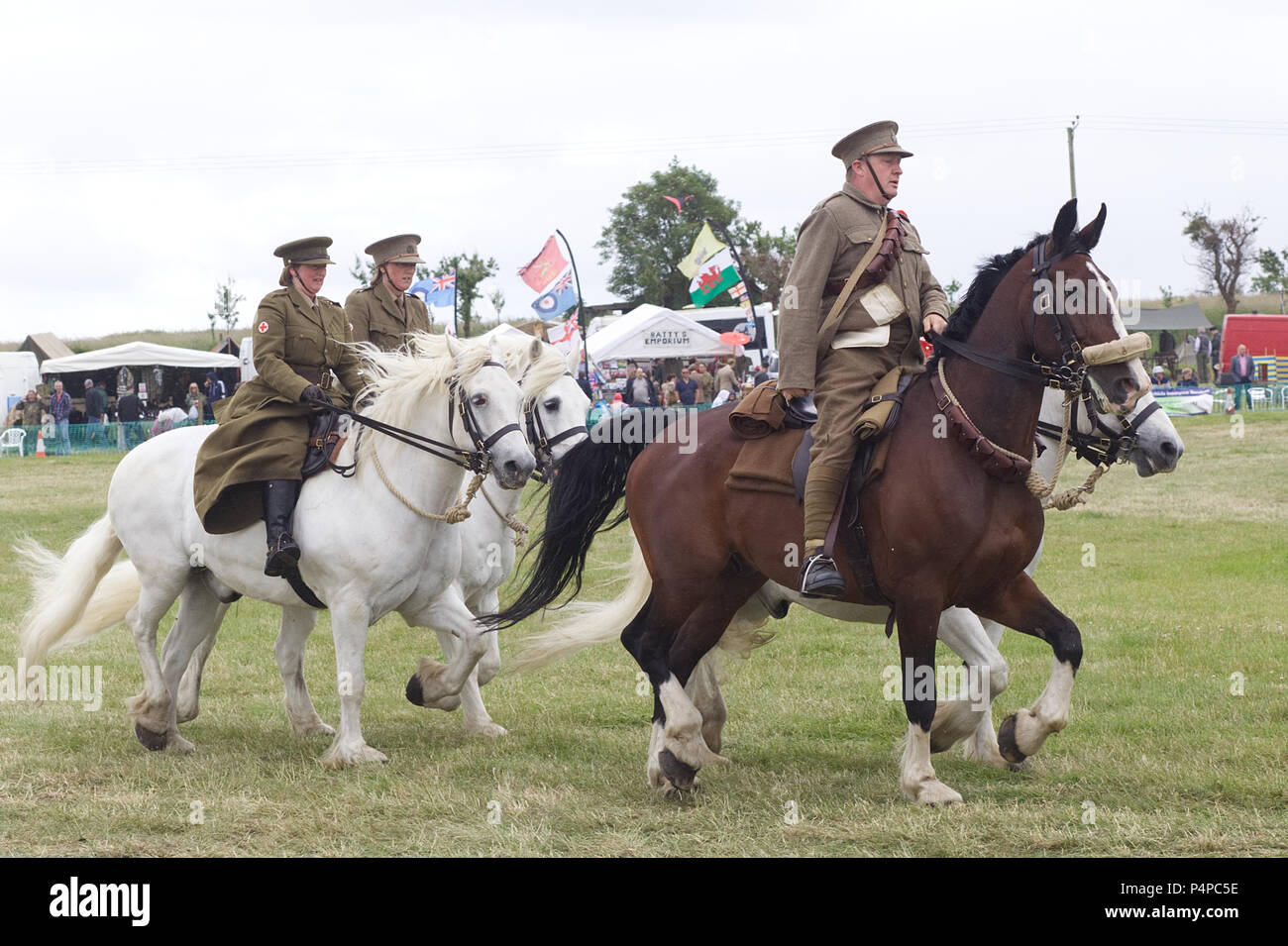 Animals at war, world war one, living history event - Stock Image