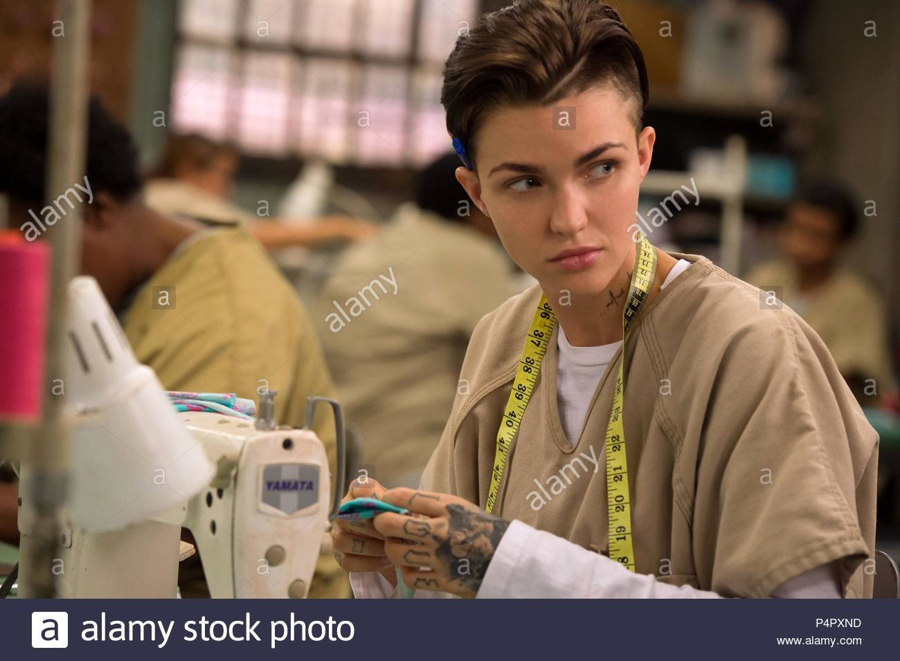Ruby Rose Stock Photos & Ruby Rose Stock Images