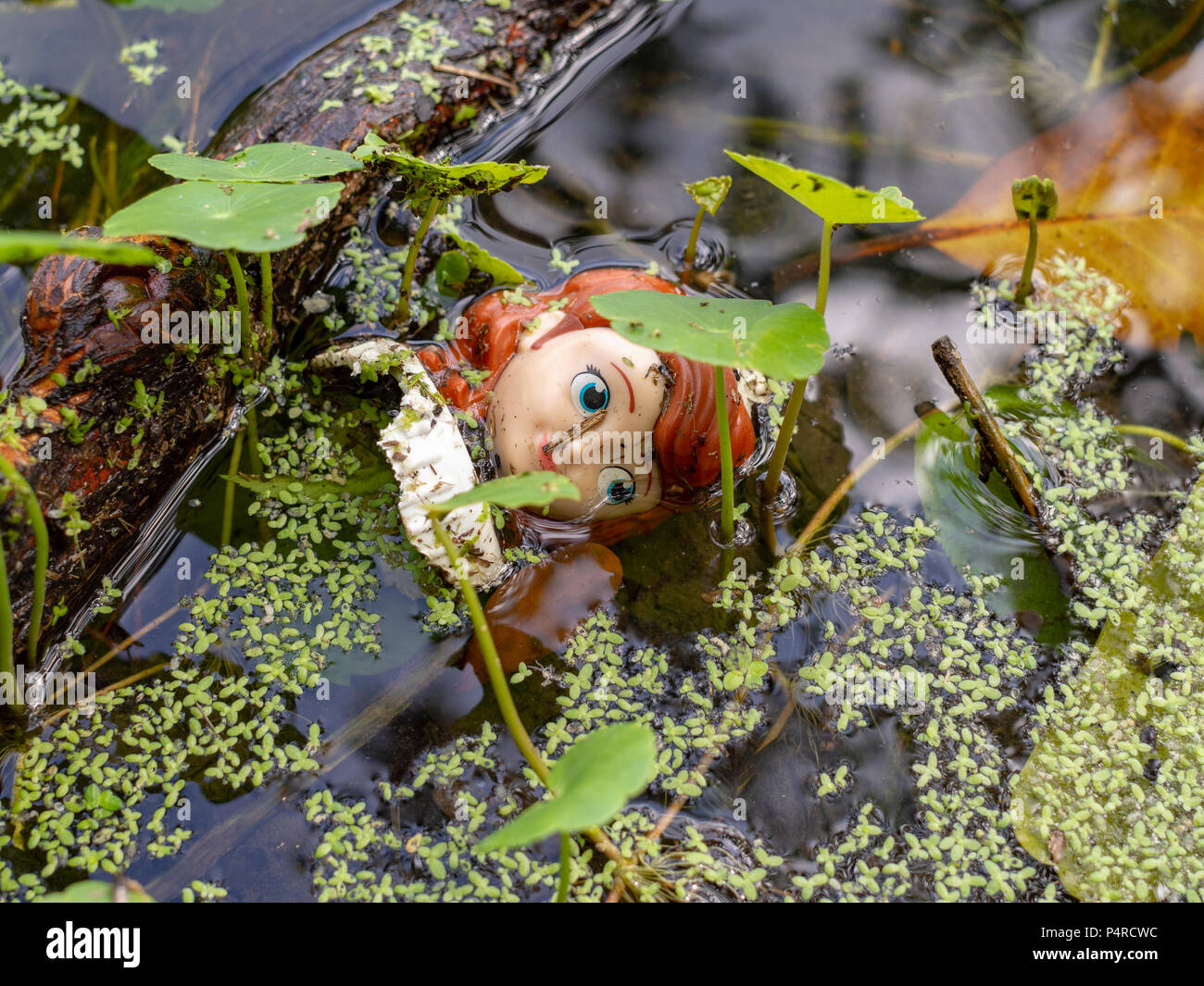 A plastic doll's head floats in a pond in algae and other aquatic vegetation in New Orleans, Louisiana. - Stock Image