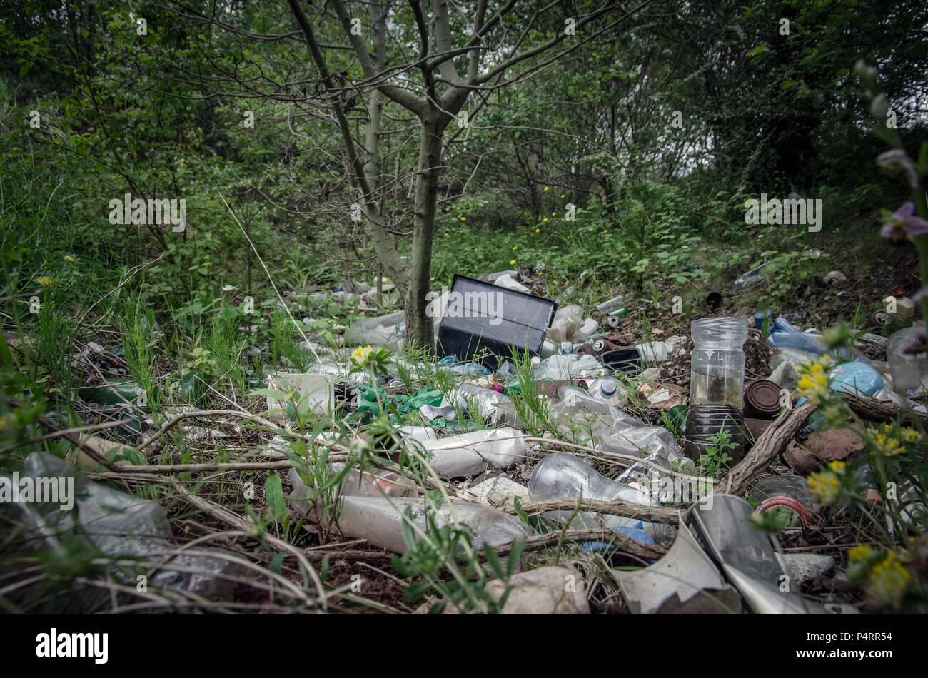 Piles of refuse, mainly plastic, abandoned amongst trees in urban woodland, West Midlands, UK. - Stock Image