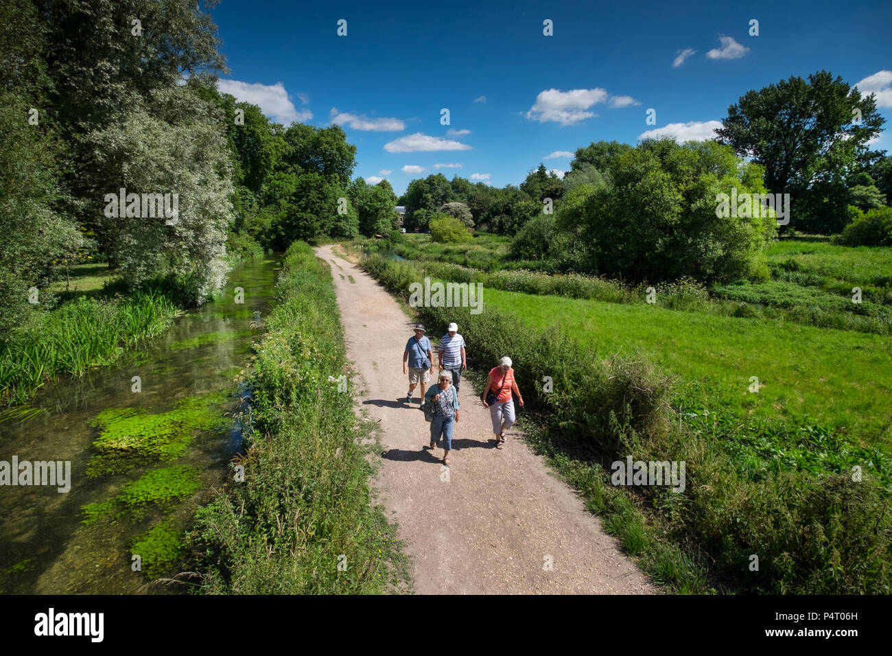 Walkers enjoying the Winchester Water Meadows, on the edge of the City of Winchester, Hampshire, UK - Stock Image