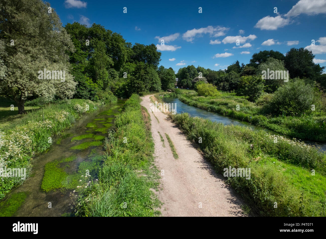 Winchester Water Meadows, on the edge of the City of Winchester, Hampshire, UK - Stock Image