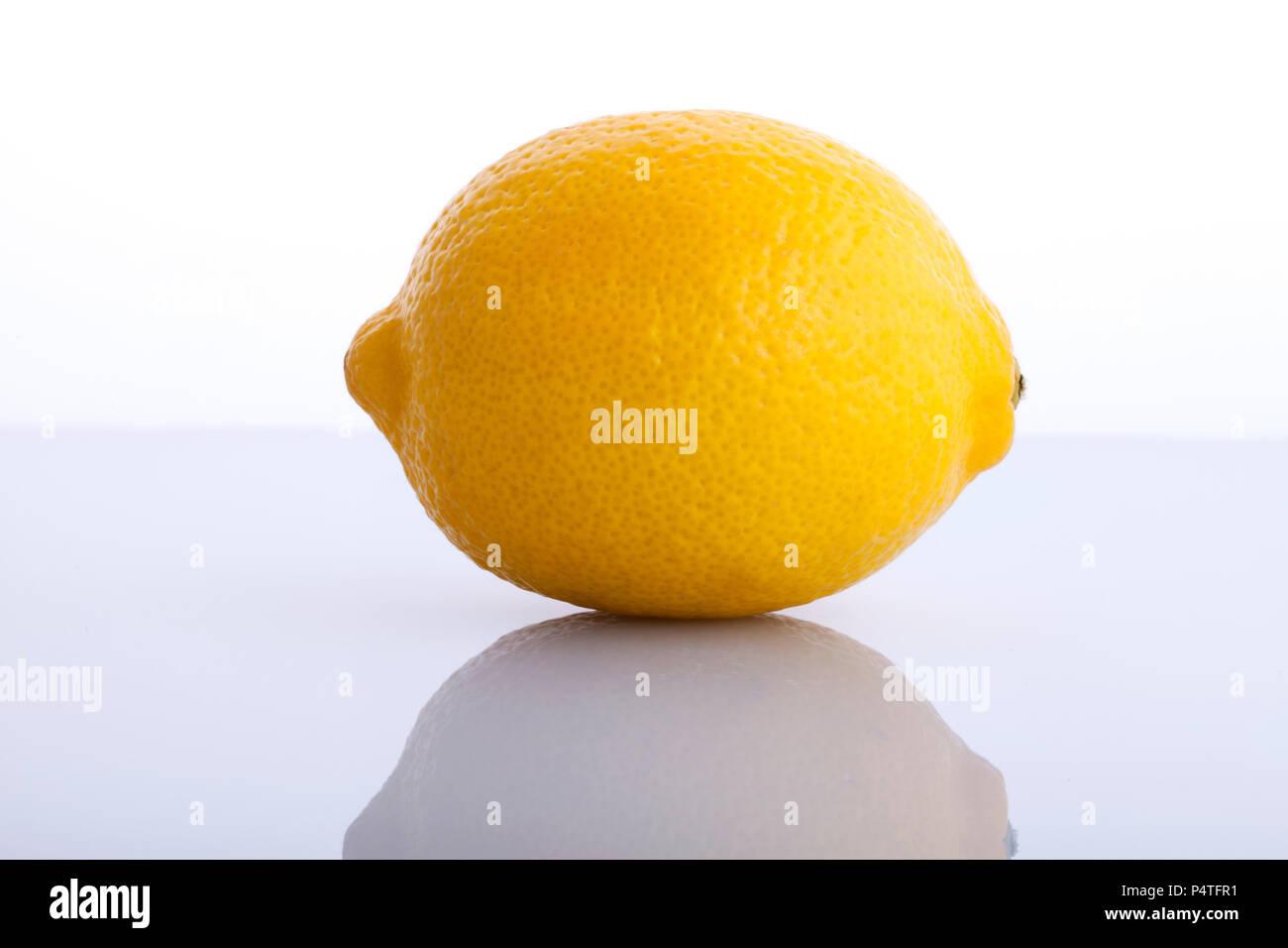 Lemon, Zitrone Stock Photo