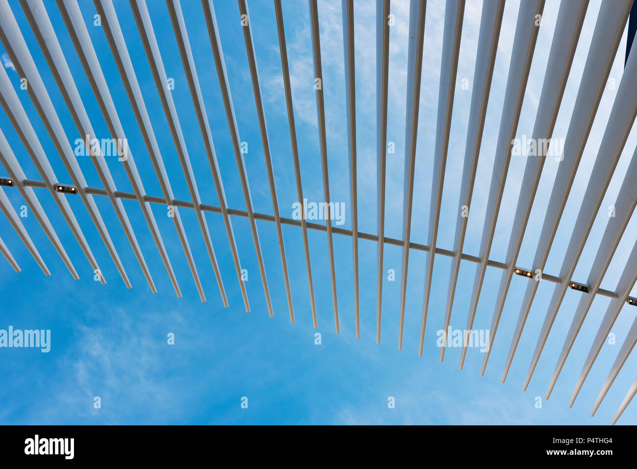 Roof of Oculus Station building, World Trade Center, New York City, USA - Stock Image