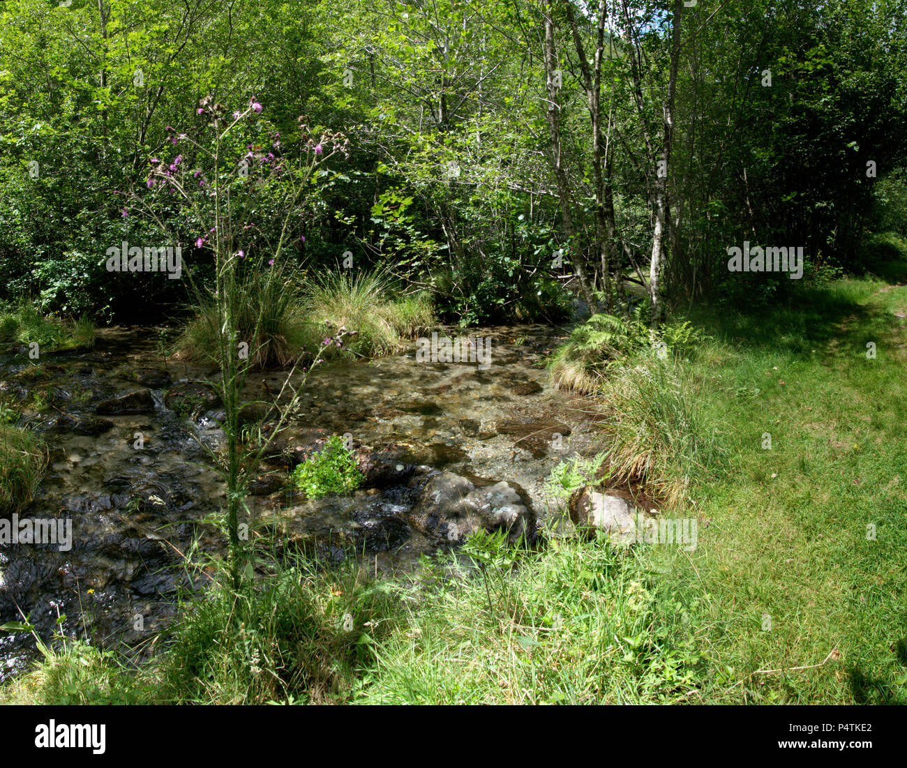 Stream bed in the Valle Versasca, Locarno - Stock Image