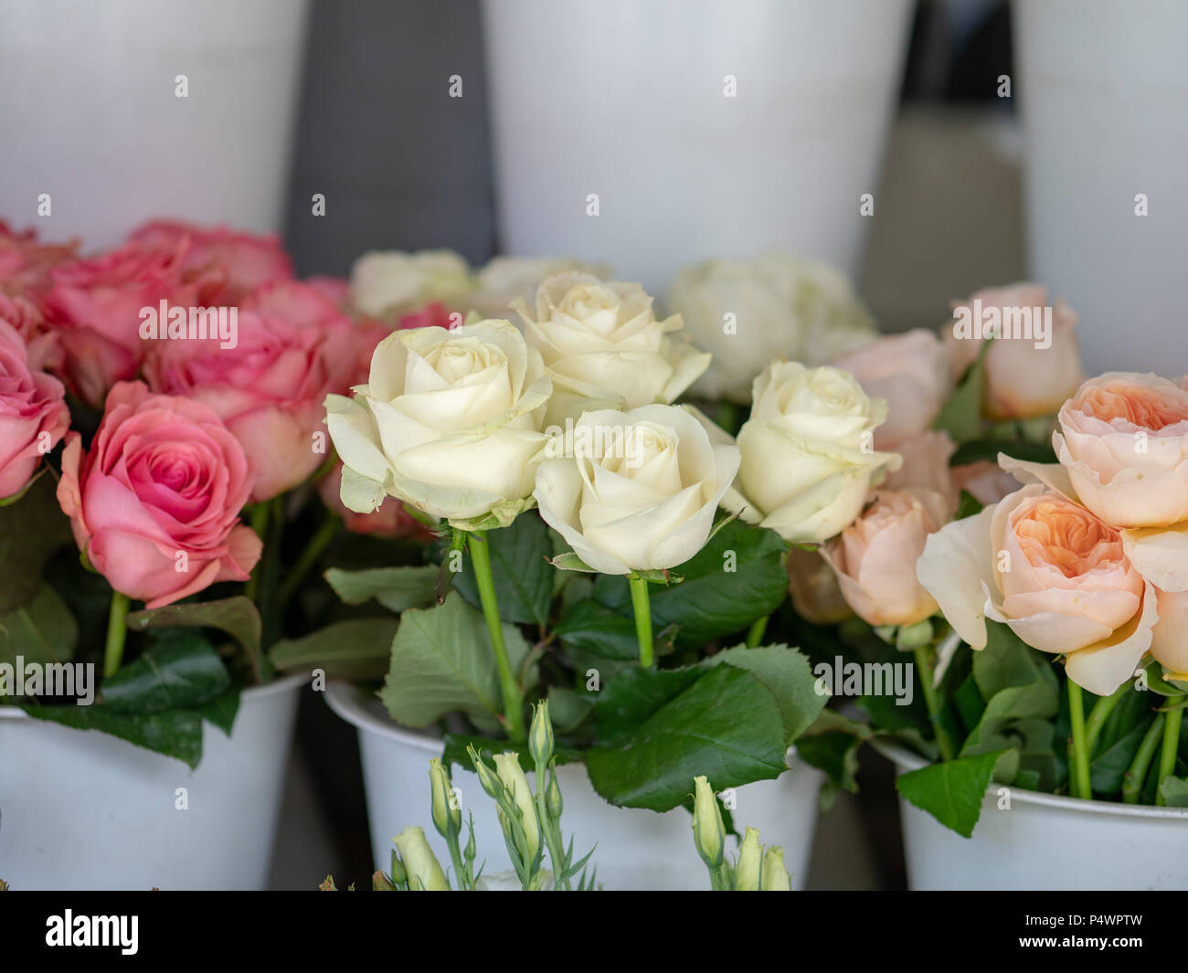 Red White Pink Bouquets Of Roses Sitting Outside Storefront Of