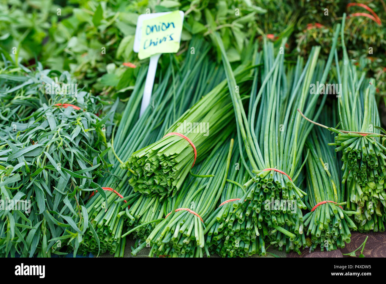 Chives and Other Herbs at an Outdoor Farmer's Market - Stock Image