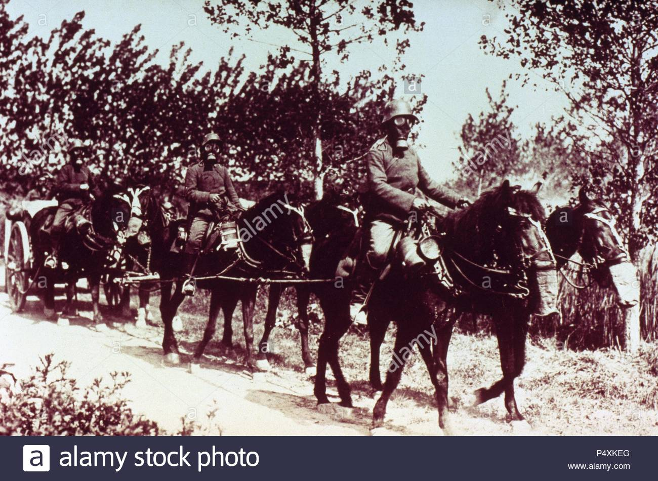 WORLD WAR (1914-1918).  Soldiers and horses of the German army, both with gas masks to protect against poison gas launched by the enemy. - Stock Image