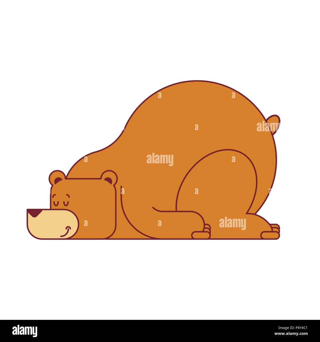 Bear sleep isolated. Wild beast sleep. Vector illustration - Stock Vector