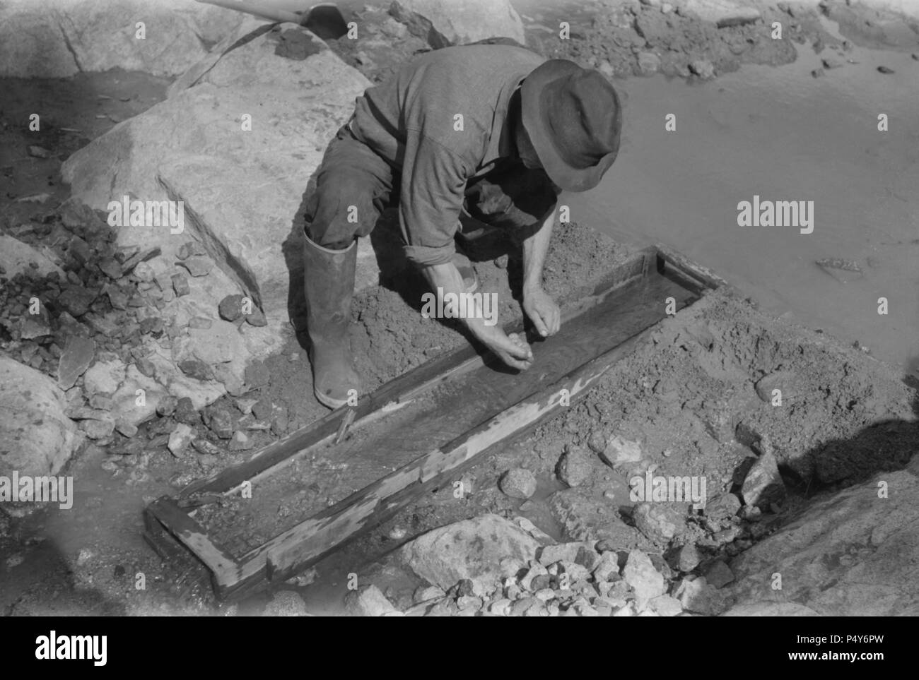 Gold Prospector By Sluice Stock Photos & Gold Prospector By
