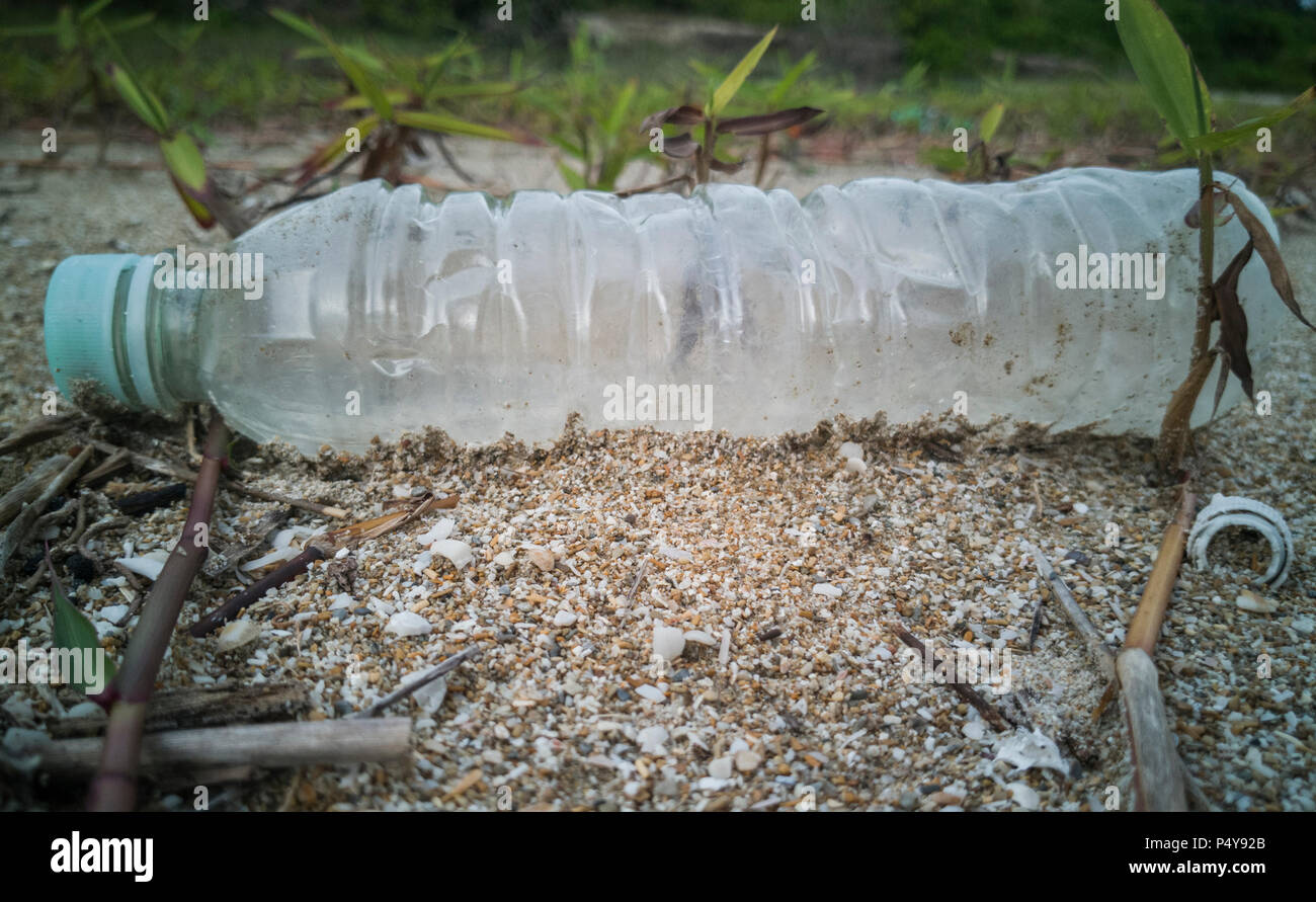 Empty single use plastic bottle washed up on beach - Stock Image