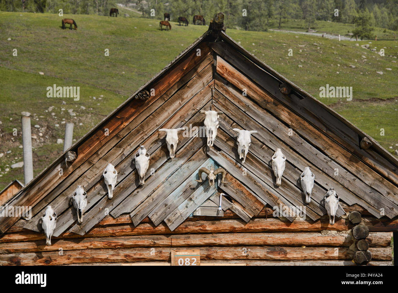 Wood home in ethnic Tuvan village, Kanas Lake National Park, Xinjiang, China - Stock Image
