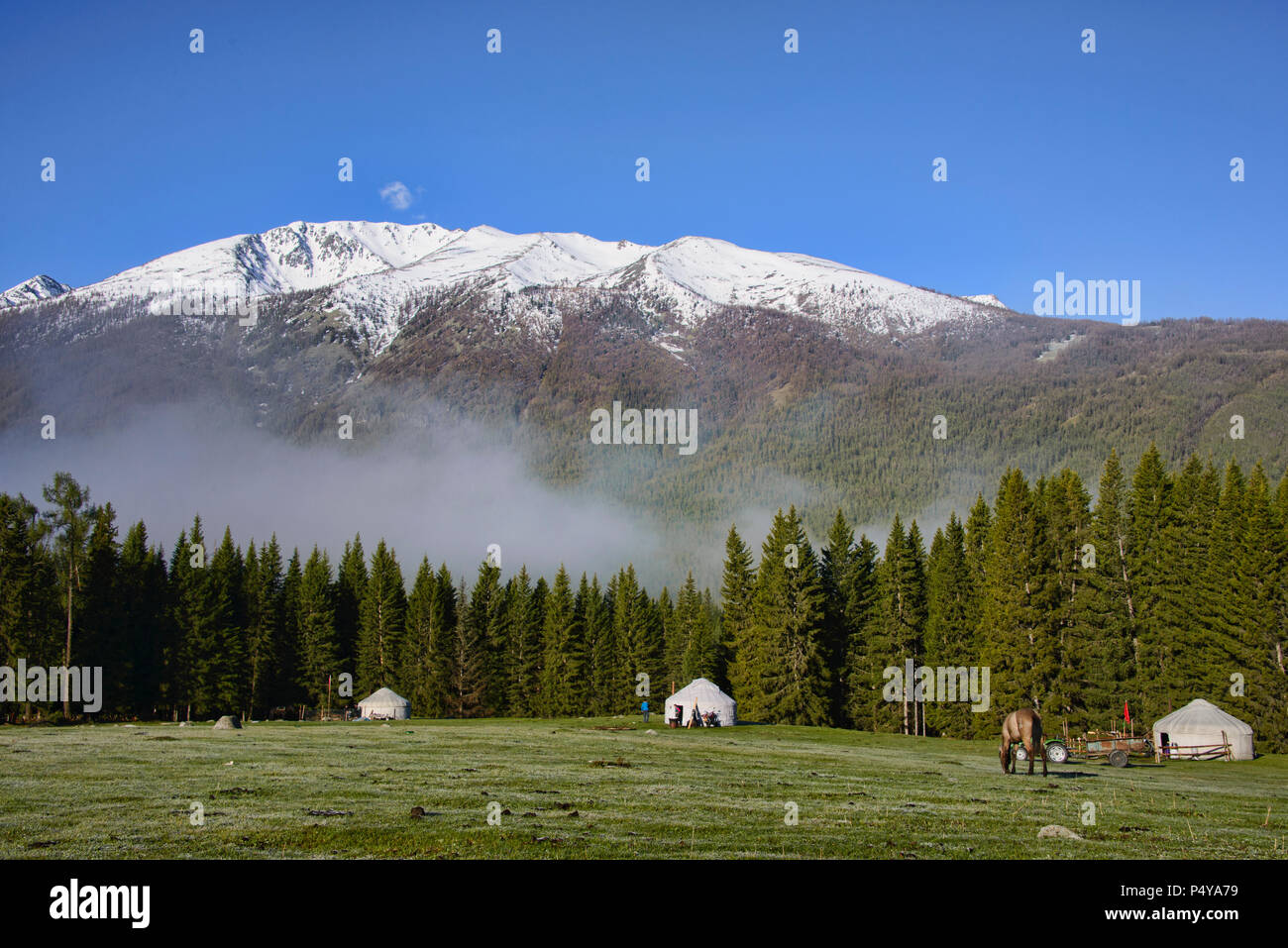 Home on the range; yurts at Kanas Lake National Park, Xinjiang, China - Stock Image