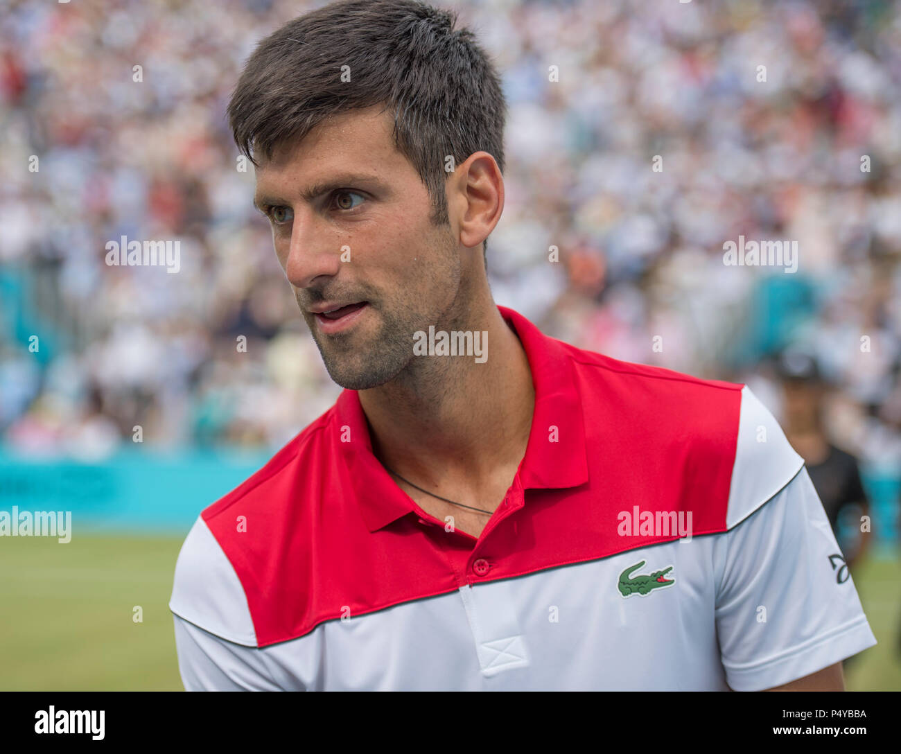 The Queen's Club, London, UK. 23 June, 2018. Fever Tree Championships Day 6 semi-final match on centre court. 12 times grand slam champion Novak Djokovic (SRB) wins his match against Jeremy Chardy (FRA) to enter the final against Marin Cilic. Credit: Malcolm Park/Alamy Live News. - Stock Image