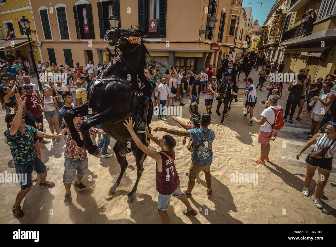 Ciutadella, Spain. 23 June, 2018:  A 'caixer' (horse rider) rears up on his horse surrounded by a cheering crowd prior to the 'Caragol des Born' parade on the eve of the traditional 'Sant Joan' (Saint John) festival in Ciutadella de Menorca Credit: Matthias Oesterle/Alamy Live News - Stock Image